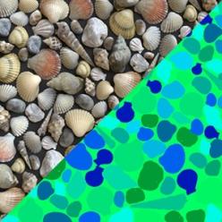 1-shells