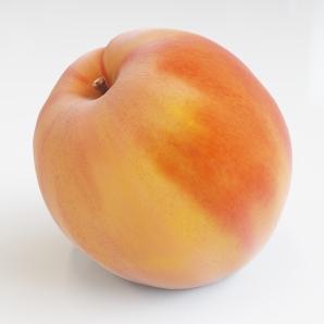 sheen-peach-1k